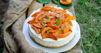 Torta fredda allo yogurt e albicocche