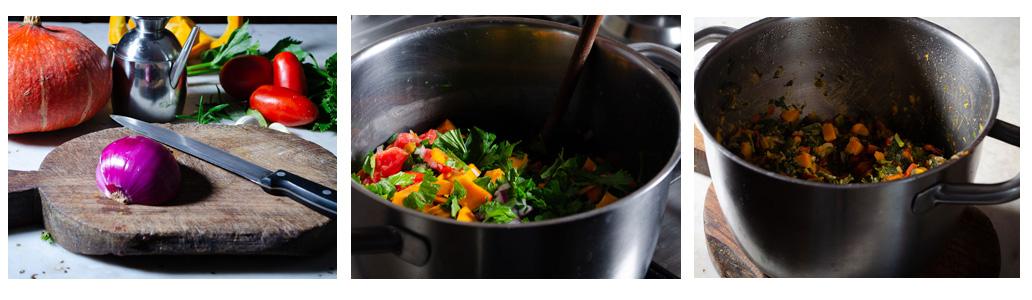 procedimento-Dado vegetale alla zucca